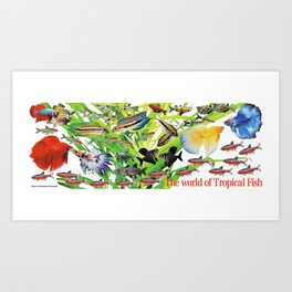 Small Tropical fish Art Print
