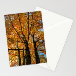 Colorful Maple of New England. Stationery Cards