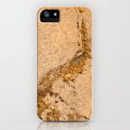 Vintage Moss Flourishes iPhone Case