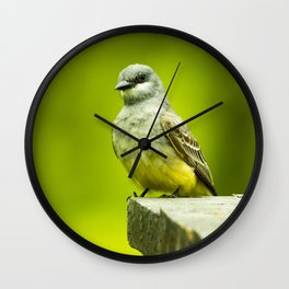 Eye Catching Western Kingbird by Reay of Light Photography Wall Clock
