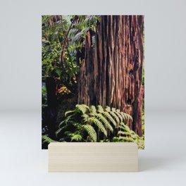 Rotting Wood Mini Art Print