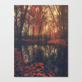 Where are you? Autumn Fall - Autumnal forest Canvas Print