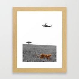 Cheetah's Prosper Framed Art Print