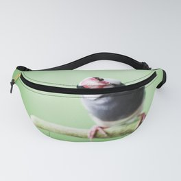 A Finch's Curiosity Fanny Pack