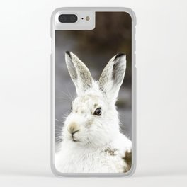 white mountain hare Clear iPhone Case