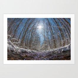 Natures Transformation  Art Print