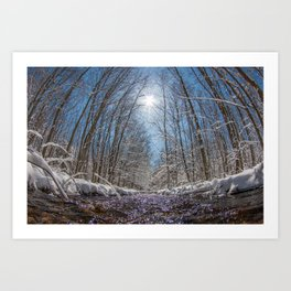 Natures Transformation  Art Print