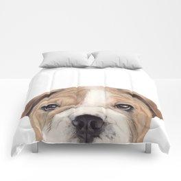 Bulldog Original painting Dog illustration original painting print Comforters