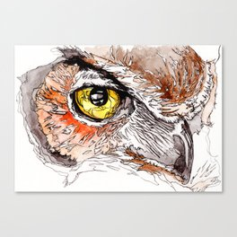 Old Wise Eye Canvas Print