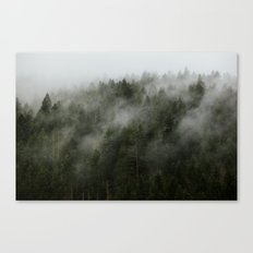 Pacific Northwest Foggy Forest Canvas Print