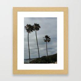 San Diego Palm Trees Framed Art Print