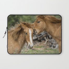 A Little Playtime Laptop Sleeve