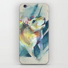 Curious rat iPhone & iPod Skin