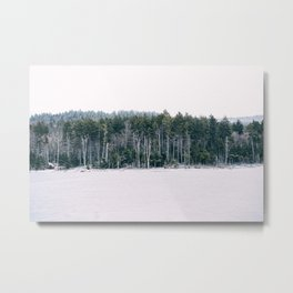 Shavers Lake, Snowshoe, WV 2014 Metal Print
