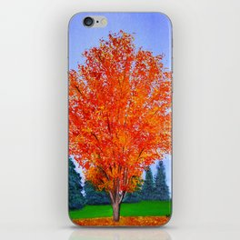Fall tree in ND iPhone Skin