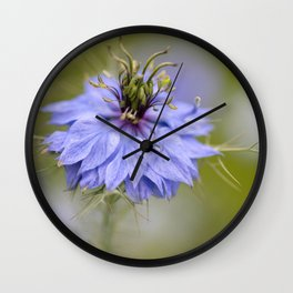 Nigella #1 Wall Clock