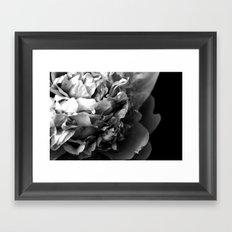 Black and White Summer Peony Framed Art Print