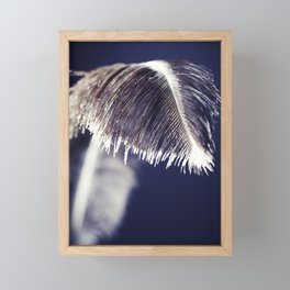 Feather Framed Mini Art Print