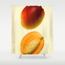 Vintage Botanical Mango Shower Curtain