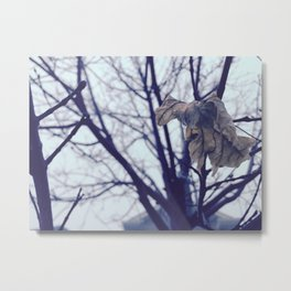 Autumn Color Metal Print