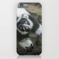 Lemur In The Glass iPhone 6s Slim Case