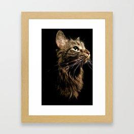 Cosmo In Profile Framed Art Print
