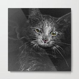 Lunar Essence of the Siberian Kitty Cat Metal Print