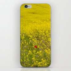 One lonely poppy in the yellow field iPhone & iPod Skin