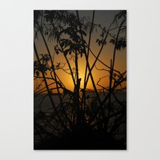 Sunrise 2 Canvas Print