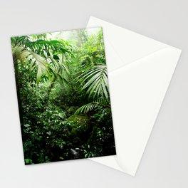 Misty Rainforest Creek Stationery Cards