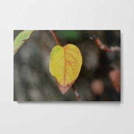 Red and Yelow Leaf Metal Print