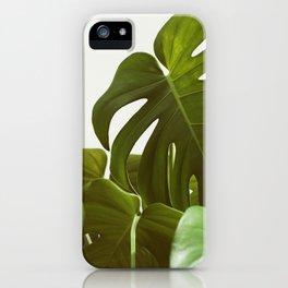 Verdure #5 iPhone Case