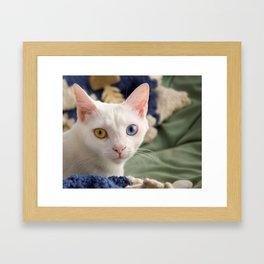 sdfghjk Framed Art Print