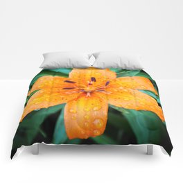 Orange Star Comforters