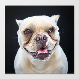 Super Pets Series 1 - Maya Smiles Canvas Print