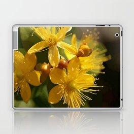 Turkish St Johns Wort Wild Flower Vector Image Laptop & iPad Skin