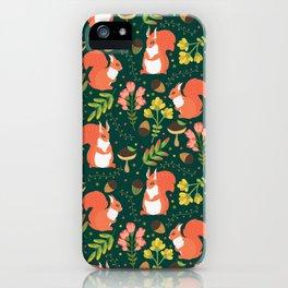 Cute squirrels iPhone Case