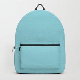 Solid Sky Blue Color Backpack