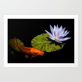 Koi And Water Lily - Gold And Blue In The Pond by Priya Ghose Art Print