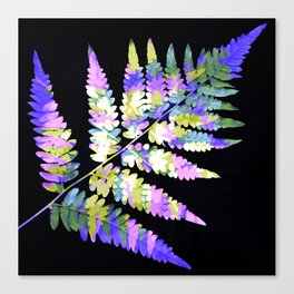 Fern in disguise - winter Canvas Print