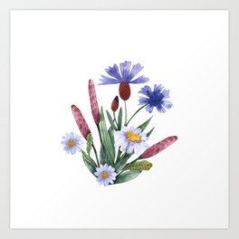 A collection of herbs and flowers. Chamomile, plantain, cornflowers. Watercolor. Art Print