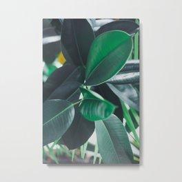 Paradise 05 Metal Print
