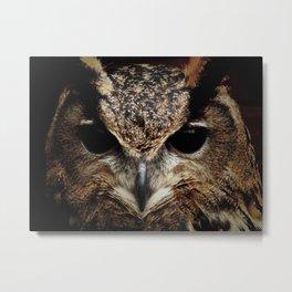 Nocturnal - Mysterious Owl Print Metal Print