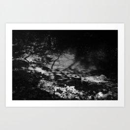 shade thrown Art Print