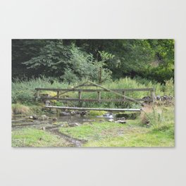 Stream of water Canvas Print