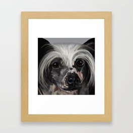 Chinese Crested Up Close Framed Art Print