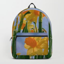 finally spring Backpack