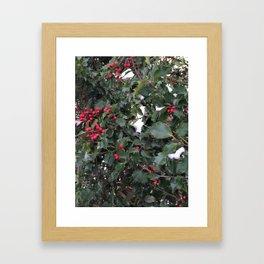 From a Winter's Walk Framed Art Print