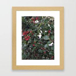 From a Winter's Walk Framed Art Print