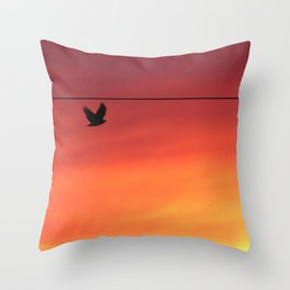 Hawk in Early Morning Throw Pillow